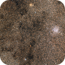 Messier 11 in a sea of stars,                                Casey Good