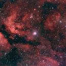 The Gamma Cygni Nebula,                                Petri Kiukas