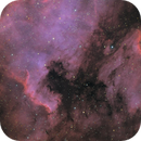 NGC 7000 pelican nebula HOO RGB,                                echosud