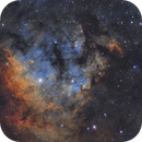Ced 214 nebula in Cepheus,                                Toshiya Arai