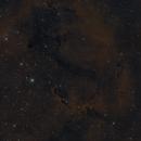 IC 1396,                                Scott Richards