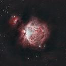 M42 Orion,                                Miro Nez