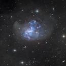 NGC 1313 - Topsy Turvy Galaxy,                                Lee Borsboom