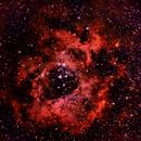 Rosette Nebula,                                Andrew Harrell