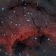 Pelican Nebula (IC 5070, detail view),                                Henning Schmidt
