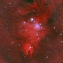NGC 2264 - Cone & Fox nebula,                                Richard Kelley