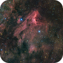 The Pelican Nebula,                                APshooter