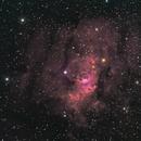 Bubble nebula,                                Doug Lalla