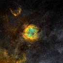 IC1396,                                silentrunning