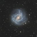 NGC5236/M83 - Southern Pinwheel Galaxy,                                Israel Mussi