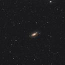 M63 the Sunflower galaxy,                                Ivan Bosnar