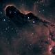 IC 1396A Elephanttrunk,                                Dickvantatenhove