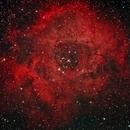 Rosette Nebula,                                Ken Sharp