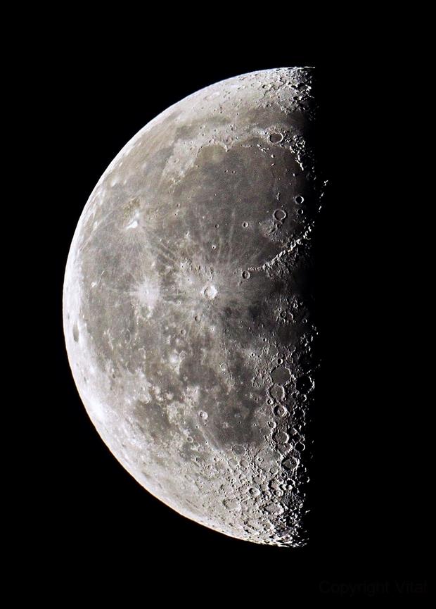 Moon,                                Vital