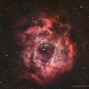 Rosette Nebula,                                Obaid Musabbeh