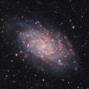 M33 - Triangulum Galaxy,                                Monty