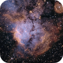 NGC 2467 - Narrowband Hubble Palette,                                Terry Robison