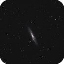 NGC253,                                Andreas Otte