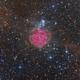 IC 5146 Cocoon Nebula,                                Frank Iwaszkiewicz