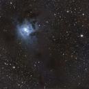 NGC7023,                                PascalB