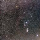 Orion Wide-field ,                                tphelan88