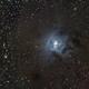 NGC  7023 - Iris Nebula,                                GALASSIA 60