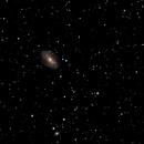 M81 M82,                                Martin