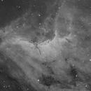 Pelican Nebula (IC5070) in Ha,                                Jose Carballada