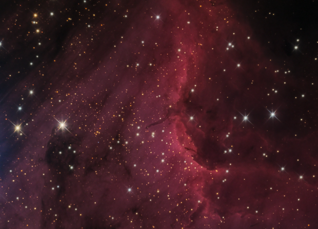 IC 5070, the Pelican Head with HH555,                                Patrick Chevalley