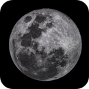 Full Moon,                                francopanetta