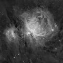 Messier 42/43 en Halpha/CLS,                                Georges