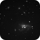 NGC 3239 - ARP 263,                                Günther Eder