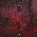 IC 1396A, Elephant's Trunk nebula,                                Alexander Sorokin