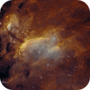 IC4628 - The Prawn Nebula,                                Tim Hutchison