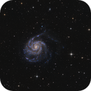 M 101 - The Pinwheel Galaxy,                                Jan Schubert