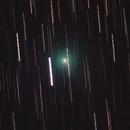 Comet Y4 (ATLAS),                                Wesley Creech