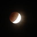 Lunar Eclipse,                                Steve Siedentop