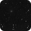 Panstarrs C2016/M1 moving during 1 hour,                                nzv