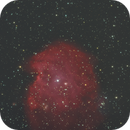 NGC2175 The Monkey's Head nebula,                                Detlef Möller
