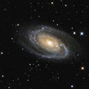 M81 Bode's and M82 Cigar Galaxies,                                Gerrit Barrere