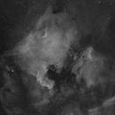 NGC7000 & IC5070 (2x2 mosaic),                                Julian Alonso