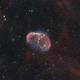 Crescent Nebula,                                Bernd Steiner