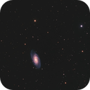 NGC 2903,                                Andreas Zeinert