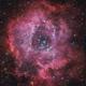 Rosette Nebula,                                Robert Eder