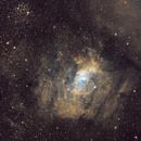 The Bubble Nebula in SHO,                                Arun H.