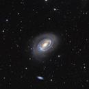 NGC 4725 & NGC 4712 , 4747 , galaxies in Coma Berenices,                                Bogdan Jarzyna