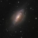 NGC 3521,                                Michael Feigenbaum