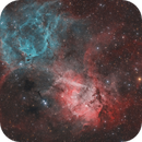 Sh2-132 the Lion Nebula,                                Dennis Sprinkle