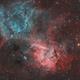 Sh2-132 the Lion Nebula,                                Dennis Sprinkle