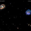 ngc1042  + ngc1052  galassie nel  cetaceo                       distanza  60 milioni A.L.,                                Carlo Colombo